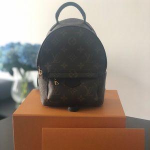 Louis Vuitton palm spring mini ❤️